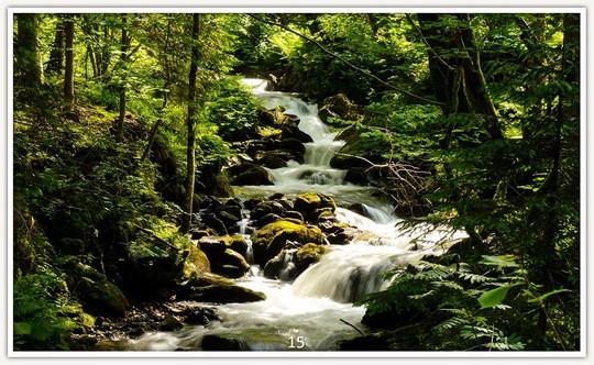 Wasserfall 15